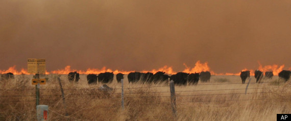 Drought-driven Texas wildfires
